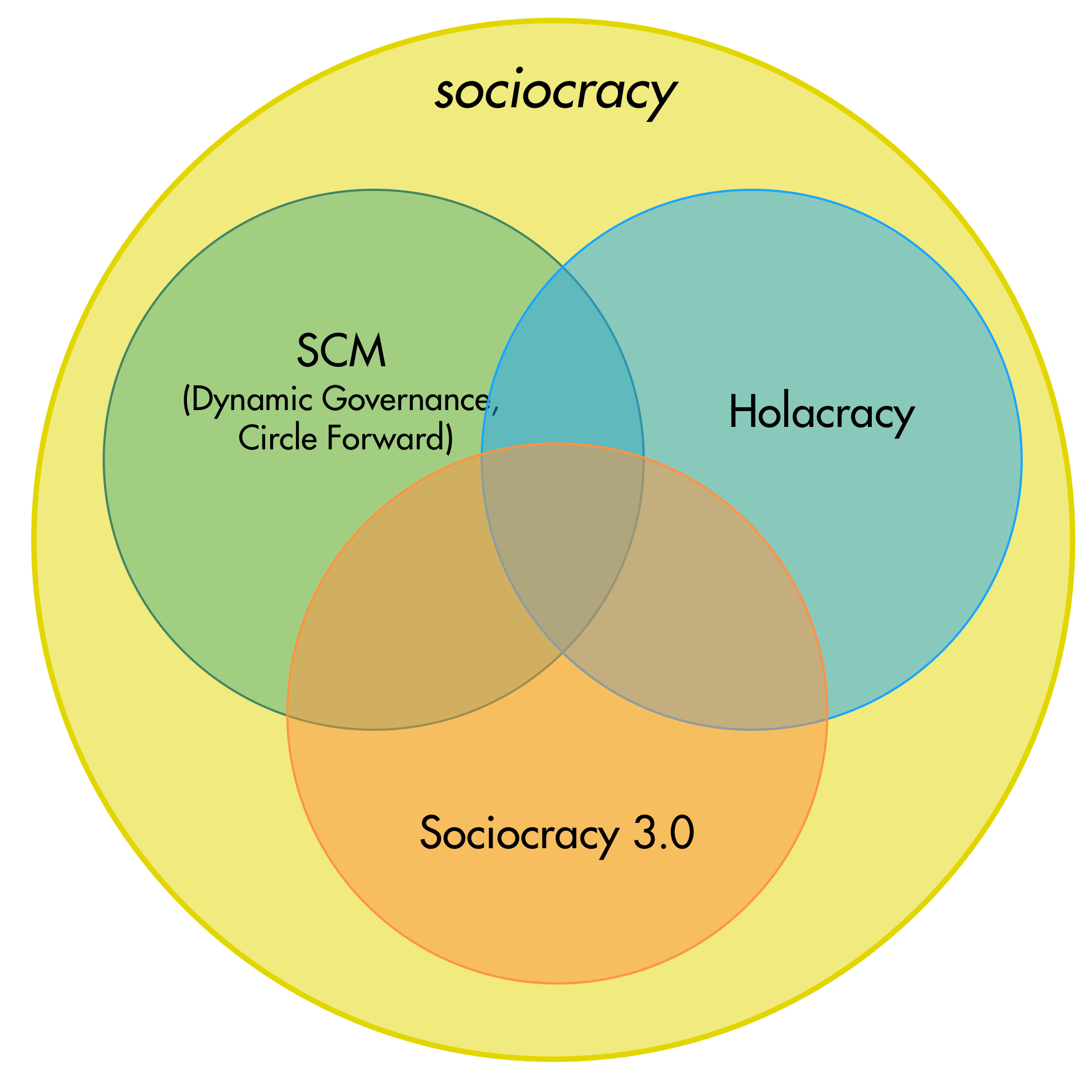 sociocracy-variants