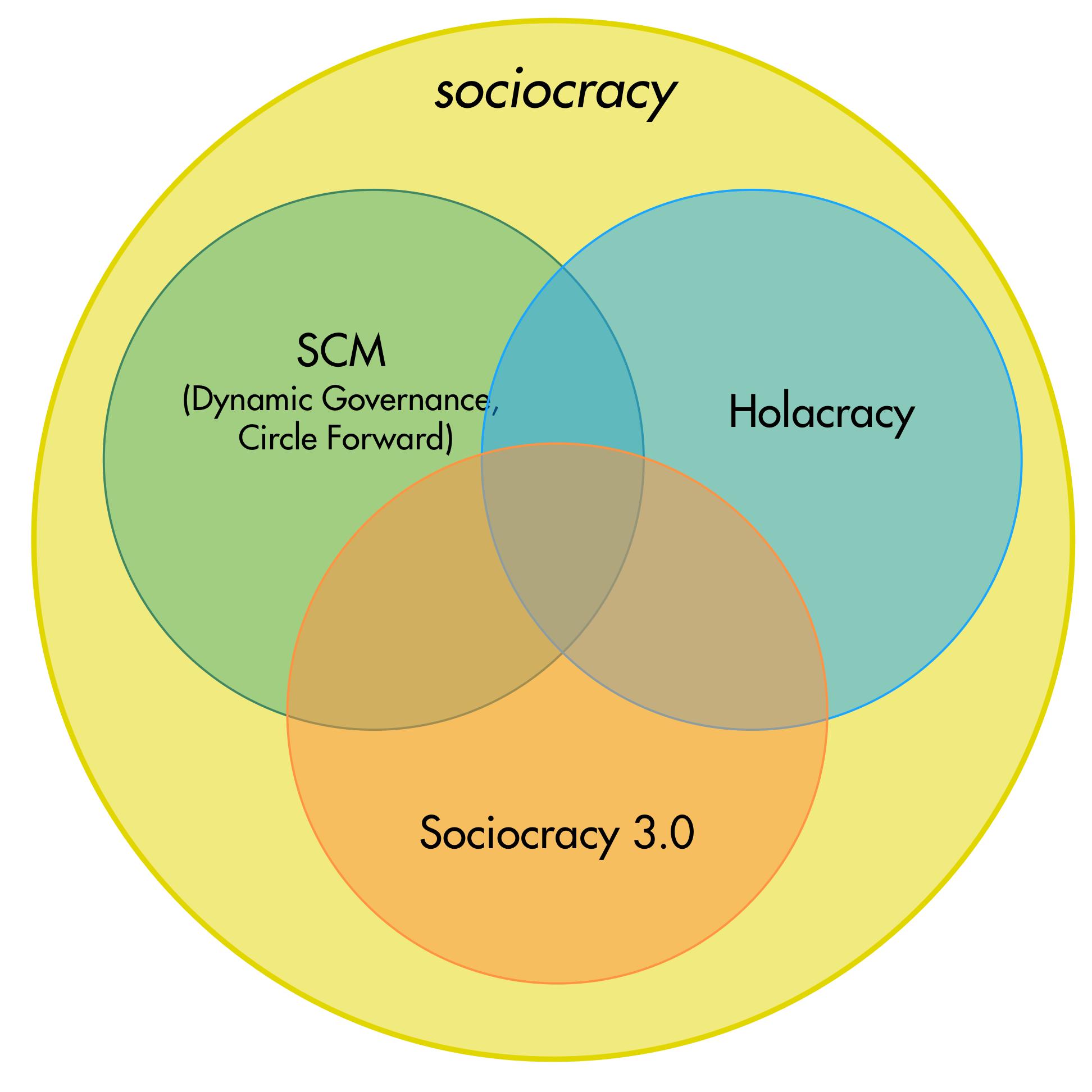 sociocracy-variants